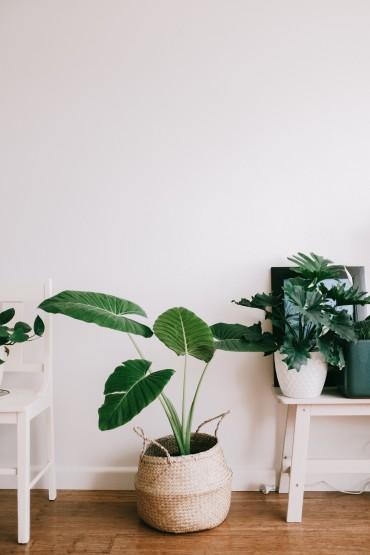 5 приемов экономии пространства